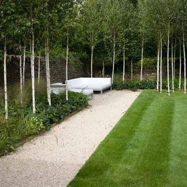 Giardino con alberi e divani.  Fonte foto ( http://www.housetohome.co.uk )
