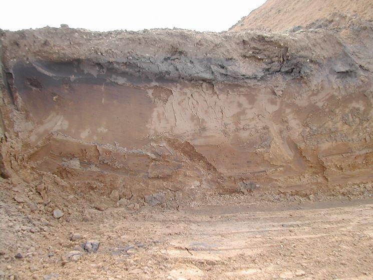argilla espansa benefici