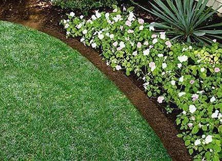 Bordure per aiuole tecniche di giardinaggio for Piante perenni per bordure