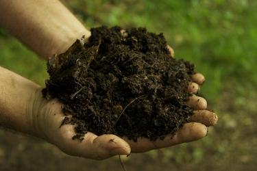 Tipologia concime organico