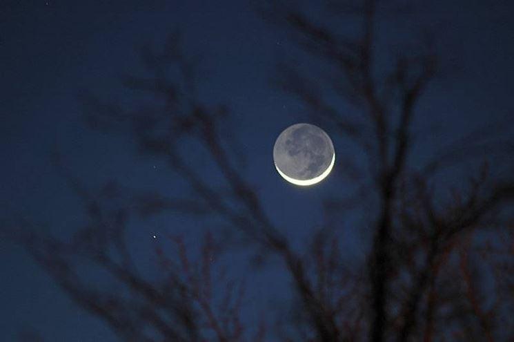 Luna e potatura
