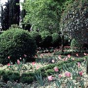 I Giardini in primavera.