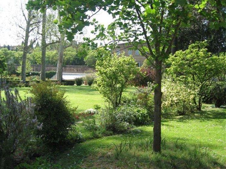 Scorcio del giardino Torrigiani