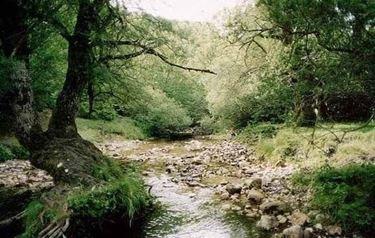 Parco nazionale Abruzzo, Lazio e Molise