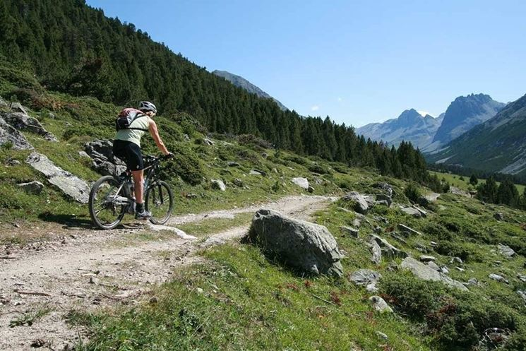 Percorso in montain bike