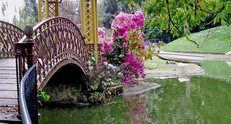 Particolare orientale del giardino