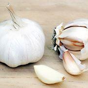 come piantare l aglio