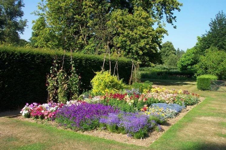 aiuola giardino