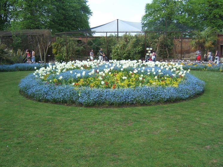 Aiuole giardini crea giardino quali aiuole per giardino for Giardini e aiuole