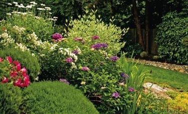 Casa giardino crea giardino for Crea progetto casa