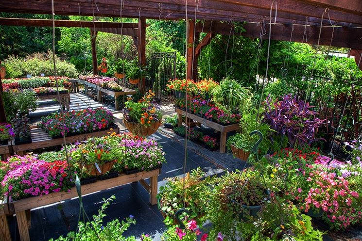 centro per il giardino
