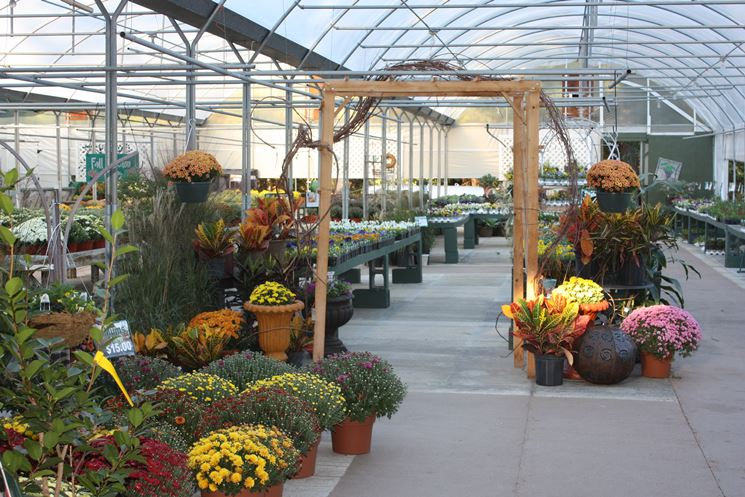centri giardinaggio