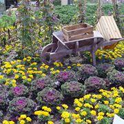 giardino invernale