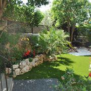 Vialetto giardino crea giardino come realizzare - Alberi da giardino di piccole dimensioni ...