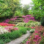 Giardini fioriti crea giardino realizzare un giardino - Giardino con brecciolino ...