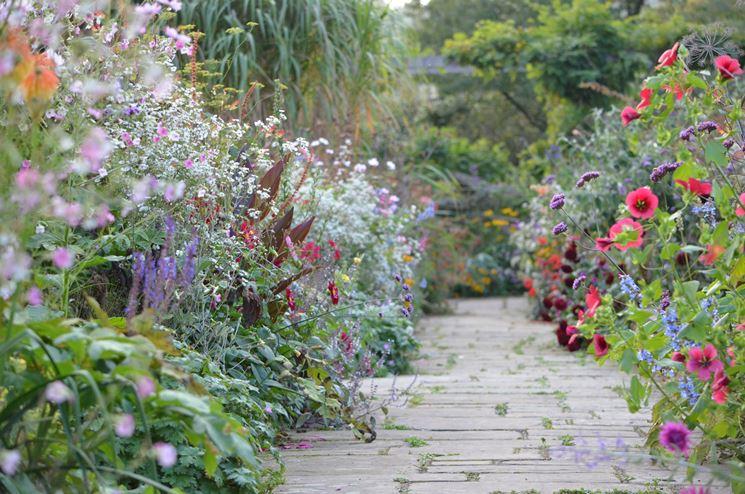 fiori in giardino inglese