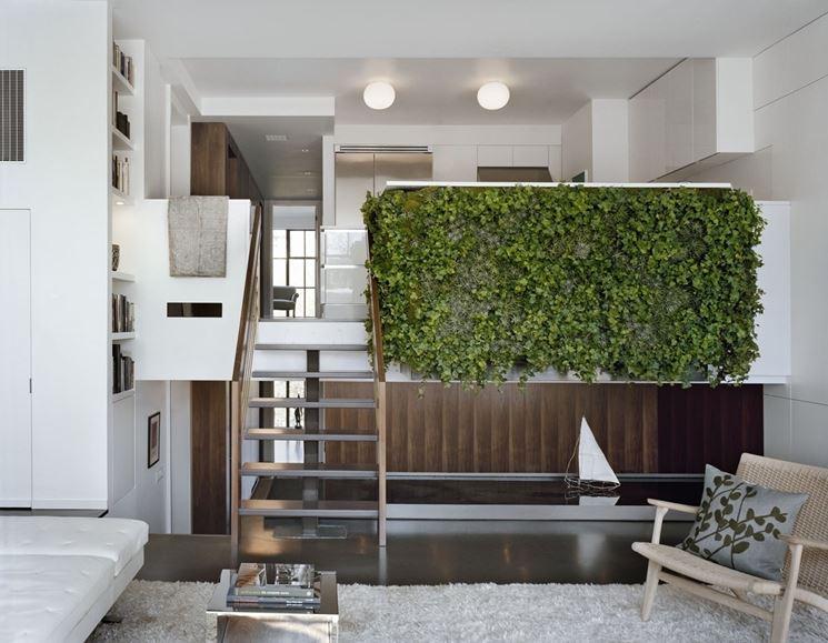 Giardino verticale   domande e risposte giardinaggio