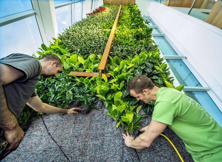 Giardini verticali realizzazione crea giardino - Giardino verticale interno ...