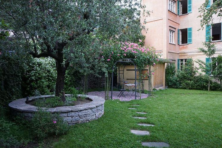 Alberello giardino