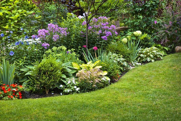 Giardino fiori piante