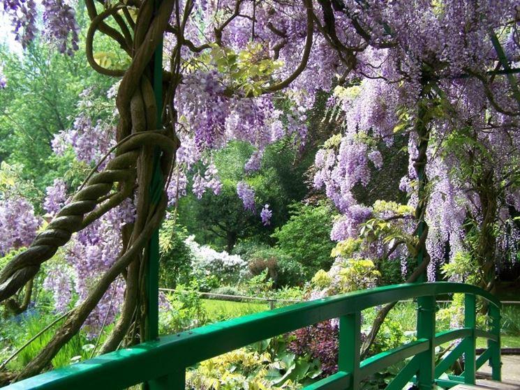 Idee per il giardino crea giardino come progettare giardino - Idee per il giardino ...