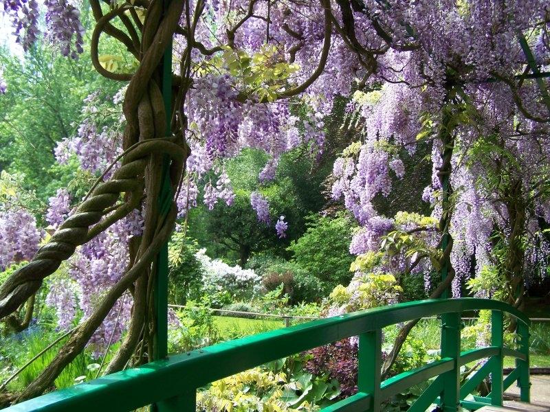 Idee per il giardino crea giardino - Idee per aiuole giardino ...
