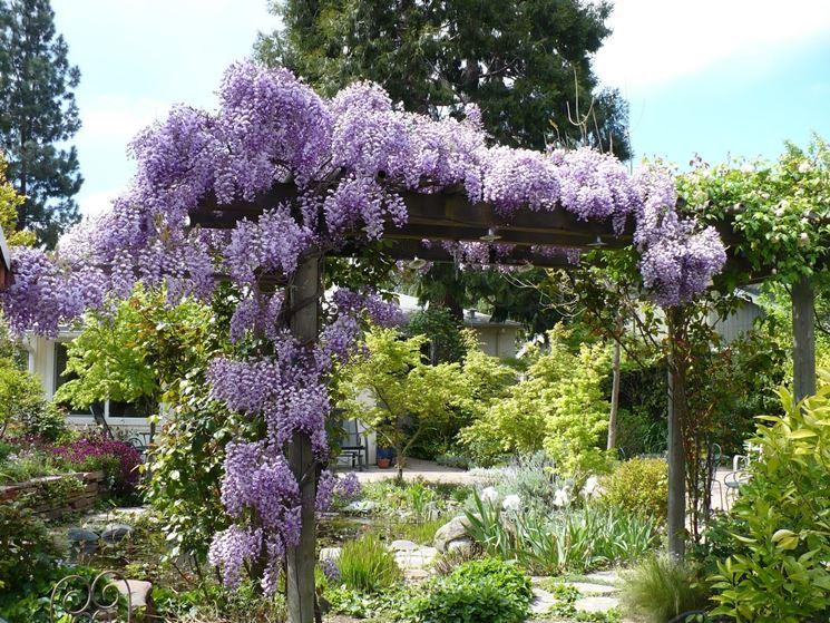 Popolare Piccoli giardini privati - Crea giardino - Allestire un piccolo  RM15