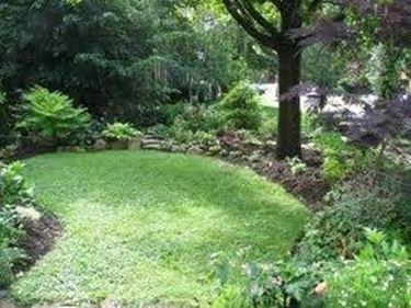 Piccoli giardini crea giardino for Allestire piccoli giardini
