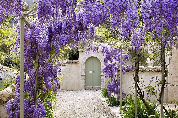 Piccoli giardini crea giardino giardini di piccole for Giardini piccoli