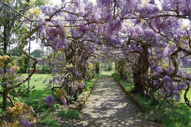 Progetti giardini privati crea giardino come for Progetti di giardini