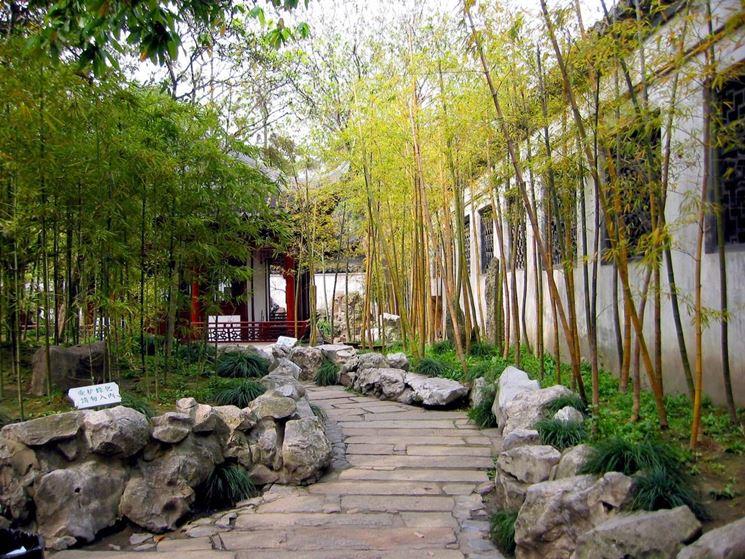 Progetti giardini privati crea giardino come for Japanese bamboo garden design