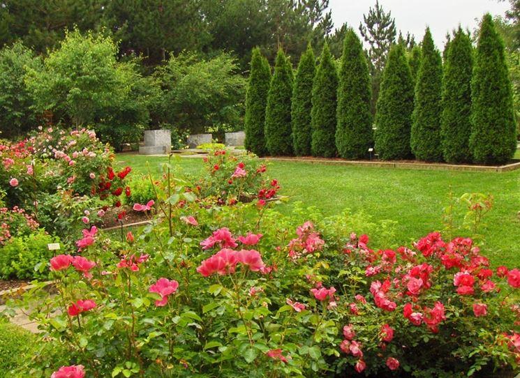 realizzazione giardini privati crea giardino come