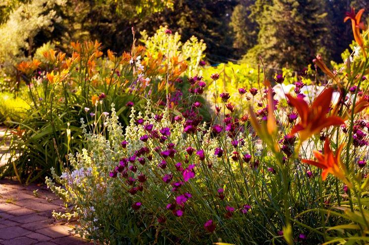 Realizzazione giardini crea giardino idee per - Progetto giardino mediterraneo ...
