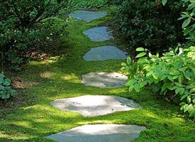 Pietrisco per giardini
