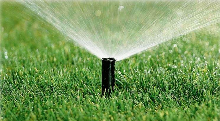 irrigazione giardino irrigazione come irrigare il giardino