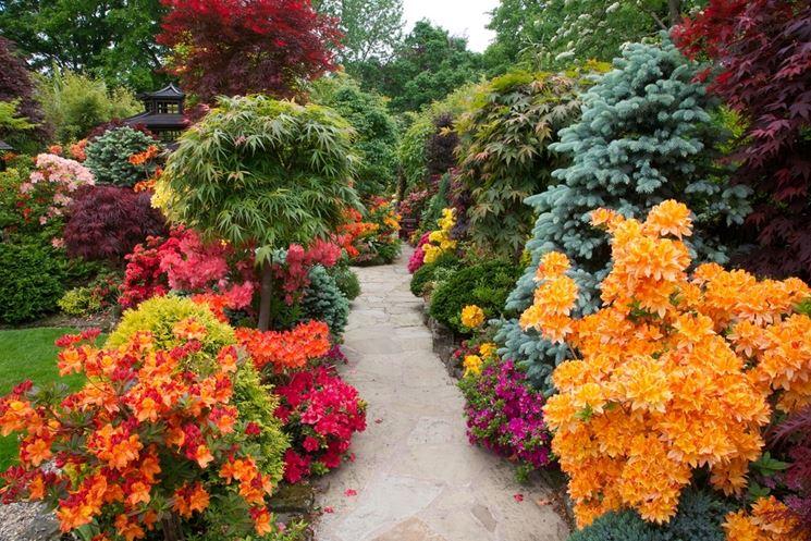 lavori del mese giardino giugno lavori del mese giardino