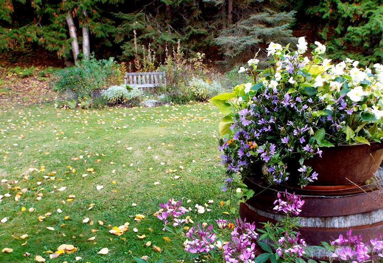 giardino in ottobre