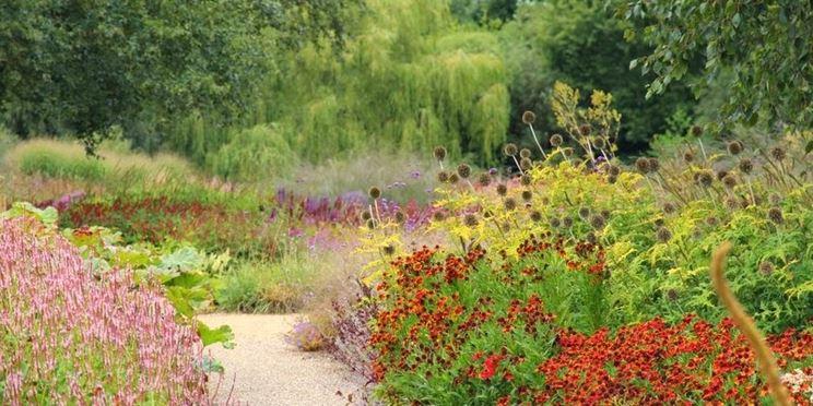 Creazione giardino variegato