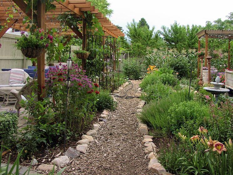 Piante ornamentali piante da giardino piante - Piante x giardino ...
