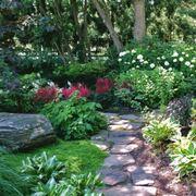 giardino ombra