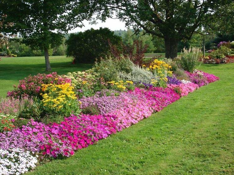 Piante perenni piante da giardino piante perenni arbusti - Giardino con rose ...