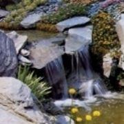 cascate in giardino roccioso