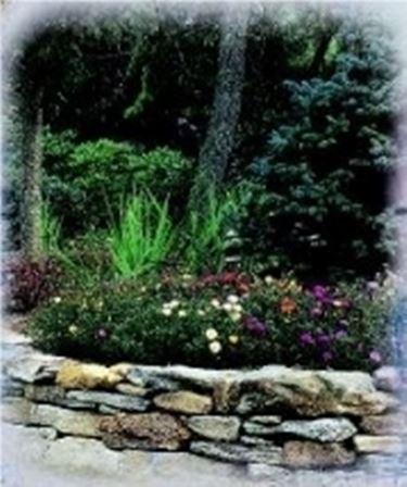 Come creare un giardino su roccia speciali progetto - Creare giardino roccioso ...