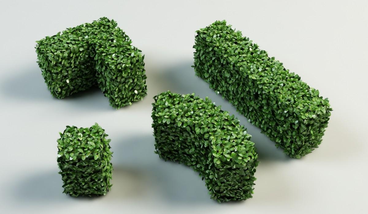 Siepe sintetica siepi caratteristiche delle siepi for Siepe sintetica artificiale