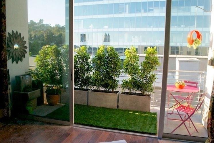 Tipico esempio di siepe sempreverde su un balcone.
