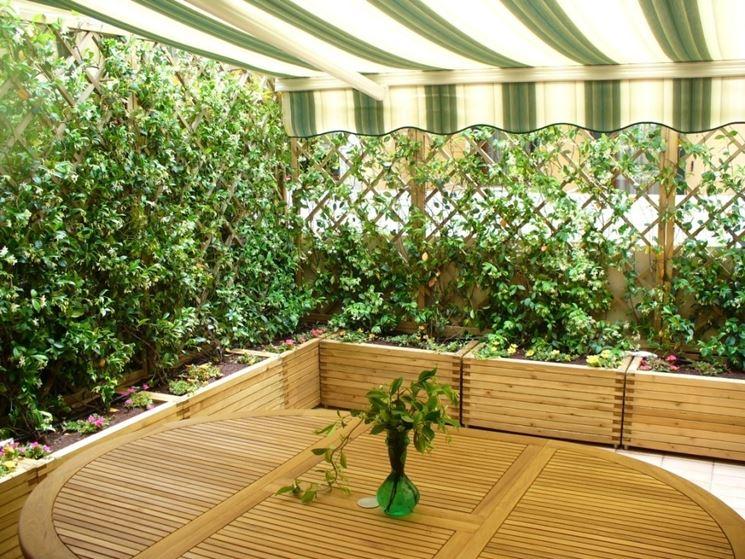 Forum fare un po 39 di verde nella resede for Piante per terrazzi