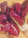 """Cichorium intybus"""""""
