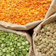 varietà lenticchie