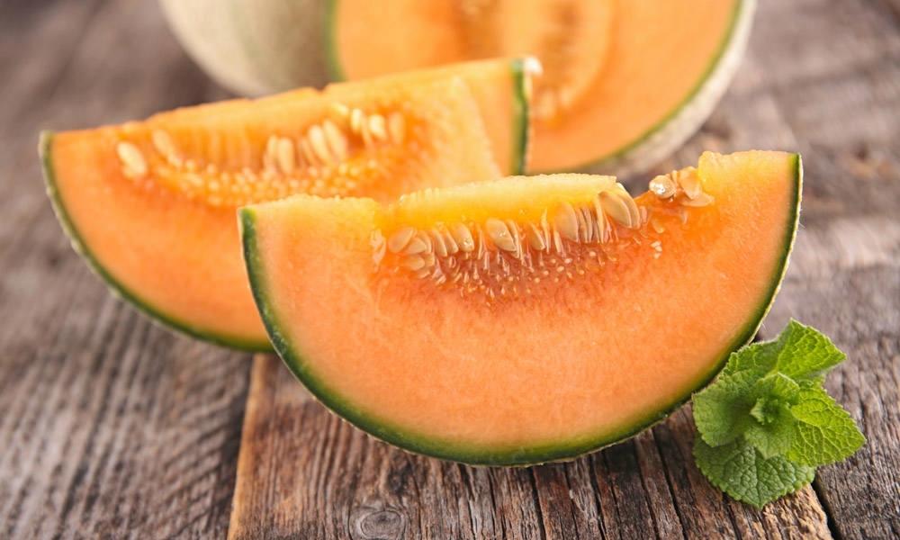 Coltivazione melone coltivazione ortaggi for Coltivare meloni