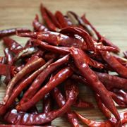 varietà di peperoncini: peperoncino de Arbol